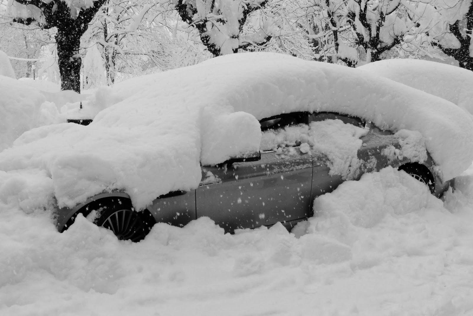 Картинка все засыпано снегом