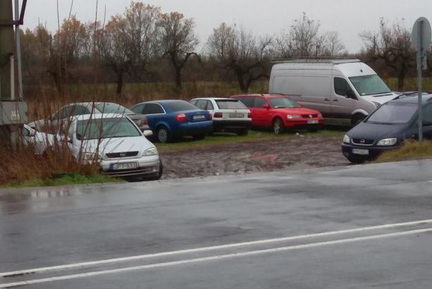 Чем отметился льготный период растаможки авто в Украине – первые итоги
