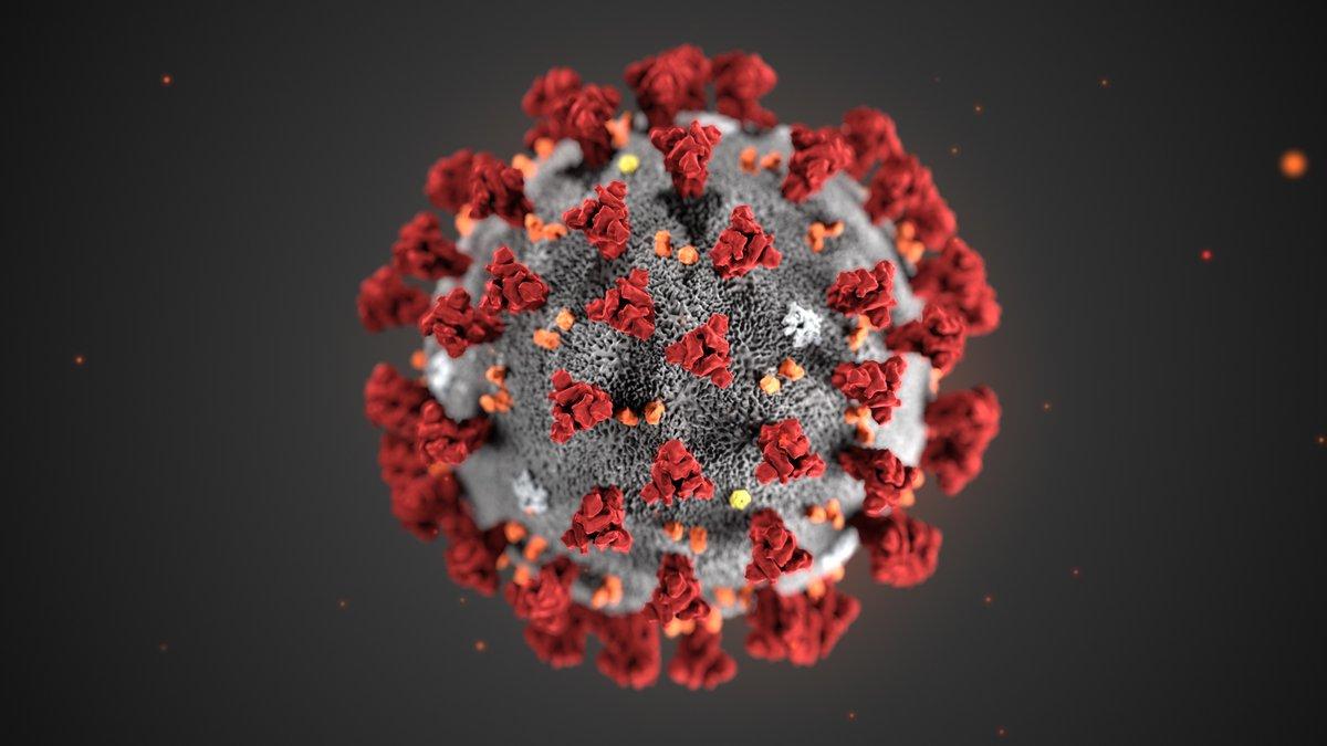 Как обрабатывать автомобиль для профилактики коронавируса