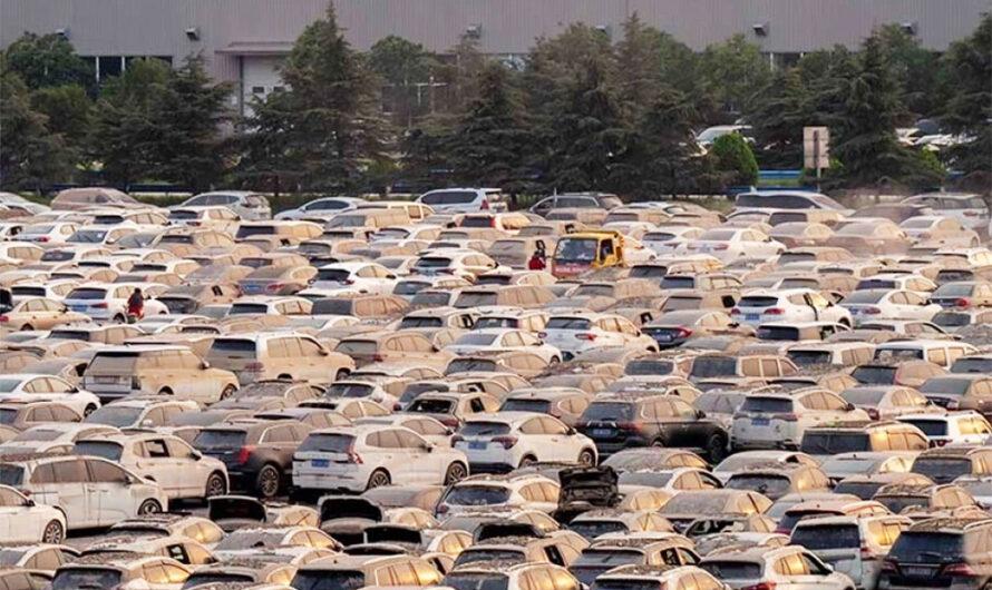 Огромную площадку с десятками тысяч утопленных авто показали с высоты птичьего полёта