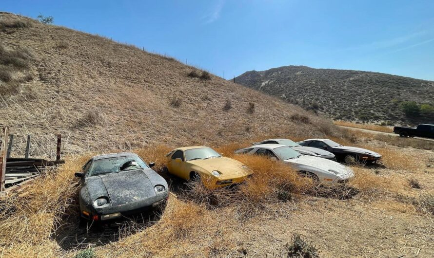 В карьере обнаружили десятки заброшенных Porsche (фото)